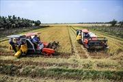 Bước đột phá lịch sử từ nghị quyết về 'tam nông'