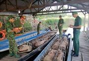 Thủ đoạn mới của các đối tượng buôn lậu vùng biên Campuchia - Việt Nam