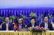 Ngoại trưởng ASEAN thảo luận về dịch COVID-19