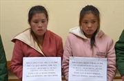 Bắt giữ hai nữ đối tượng vận chuyển ma túy từ Lào vào Việt Nam