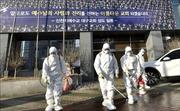 Dịch COVID-19: Nhân viên tòa thị chính Jeonju tử vong do làm việc quá sức