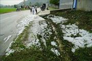 Bắc Bộ sắp đónkhông khí lạnh tăng cường, nguy cơ cao xảy ra mưa đá và gió giật mạnh