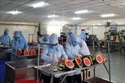 Vượt qua 'virus sợ hãi', bảo vệ người lao động