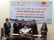 Tỉnh Kanagawa (Nhật Bản) muốn có thêm lao động Việt Nam sang làm việc