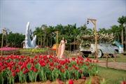 Lễ hội hoa xuân thu hút du khách