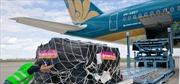 Vietnam Post thuê nguyên chuyến máy bay vận chuyển hàng hóa mùa dịch
