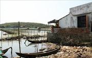 Phú Yên sẽ xử lý dứt điểm tình trạng lấn chiếm thắng cảnh quốc gia đầm Ô Loan