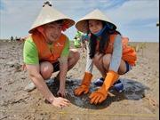 PVEP và SK Innovation tham gia hoạt động tình nguyện phục hồi rừng ngập mặn