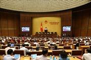 Đại biểu Quốc hội nêu vấn đề tăng giá xăng, giá điện là đúng tâm tư của cử tri