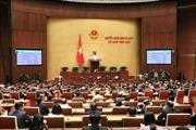 Quốc hội không ngừng đổi mới, nâng cao chất lượng
