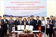 Việt Nam - Hàn Quốc hợp tác toàn diện trong lĩnh vực lao động, việc làm