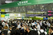 Nhật Bản khôi phục hoạt động giao thông sau bão Faxai