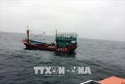 Cứu được 41 ngư dân gặp nạn trên biển