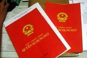 Vụ 'quan xã' làm giả hồ sơ xin cấp sổ đỏ: Hai bị cáo xin giảm nhẹ hình phạt
