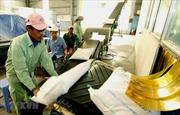 Nhu cầu yếu đẩy giá gạo Việt Nam xuống mức thấp của 12 năm