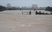 Các tỉnh từ Thanh Hóa đến Khánh Hòa tiếp tục chủ động ứng phó với mưa lớn