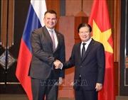Nhiều triển vọng mở rộng hợp tác đầu tư Việt Nam - Nga