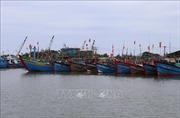 Đảm bảo an toàn cho các tàu cá và ngư dân trước bão số 6