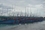 Khánh Hòa thông báo cho gần 600 tàu cá chủ động tránh bão số 6