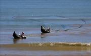 Quản lý, bảo tồn trong phát triển bền vững tài nguyên và môi trường vùng bờ