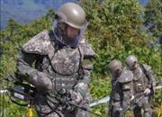 Quân đội Hàn Quốc bắt đầu gỡ mìn ở khu vực hậu tuyến phòng không