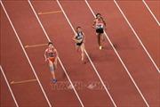 Quyết liệt môn điền kinh tại Đại hội Thể thao toàn quốc lần thứ VIII