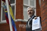 Vụ bắt nhà sáng lập WikiLeaks: Ông Julian Assange bị tuyên án tù giam