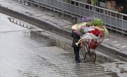 Thời tiết Tết Nguyên Đán: Khả năng xuất hiện không khí lạnh nhưng không quá mạnh