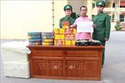 Bắt đối tượng người Trung Quốc vận chuyển pháo lậu vào Việt Nam