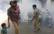 Ghi nhận 22 ca nhiễm virus Zika ở miền Tây Ấn Độ