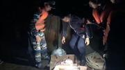 Tạm giữ gần 500 tấn nội tạng động vật đông lạnh trên 7 tàu Trung Quốc