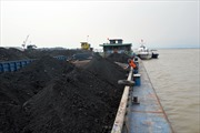 Cảnh sát biển tạm giữ tàu hàng chở 1.000 tấn than không rõ nguồn gốc