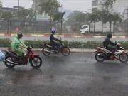 'Mưa vàng' tại Đắk Lắk sau nhiều tháng khô hạn