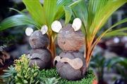 Bonsai dừa hình chuột 'hút hồn' người chơi Tết