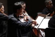 Hòa nhạc thính phòng cổ điển Chamber tại TP Hồ Chí Minh