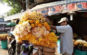 Giá hoa tươi, trái cây tăng gấp 6 lần trong ngày Rằm tháng Giêng