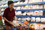 Loay hoay giải bài toán giá thịt gà tại các tỉnh phía Nam