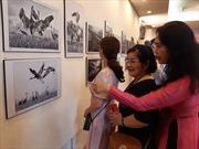 Trưng bày 63 tác phẩm ảnh nghệ thuật của các nữ nhiếp ảnh CLB Hải Âu