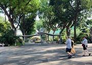 Khung cảnh thanh bình ở các điểm du lịch nổi tiếng của TP Hồ Chí Minh