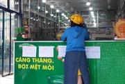 Phát hiện hàng ngàn khẩu trang y tế không rõ nguồn gốc tại TP Hồ Chí Minh