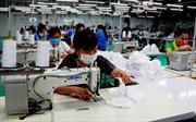 TP Hồ Chí Minh ban hành Bộ chỉ số đánh giá nguy cơ lây nhiễm COVID-19 của doanh nghiệp
