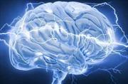 Học những kỹ năng mới - chìa khóa đảo ngược quá trình thoái hóa não ở người già