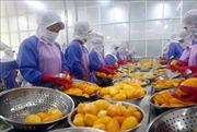 Xuất khẩu nông, thủy sản: EVFTA mới chỉ là 'cánh cửa'