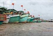 Khắc phục 'thẻ vàng'IUU: Nhiều chuyển biến mạnh mẽ tại Cà Mau