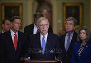 Thượng viện Mỹ tuyên bố không xem xét phê chuẩn USMCA vào cuối năm nay