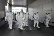 Hàn Quốc xác nhận thêm 87 trường hợp mới nhiễm nCoV