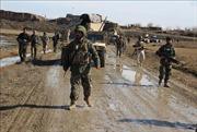 Thêm một thủ lĩnh của Taliban tại Pakistan bị tiêu diệt ở Afghanistan