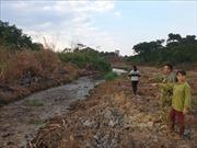 Kiểm tra, xử lý cơ sở tái chế giấy gây ô nhiễm, xả thải ra môi trường