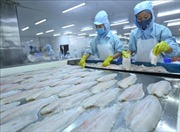 CPTPP: Sản phẩm chế biến sẽ là thách thức của nông nghiệp Việt Nam