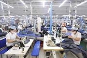 Lao động, việc làm được hưởng lợi gì từ EVFTA?